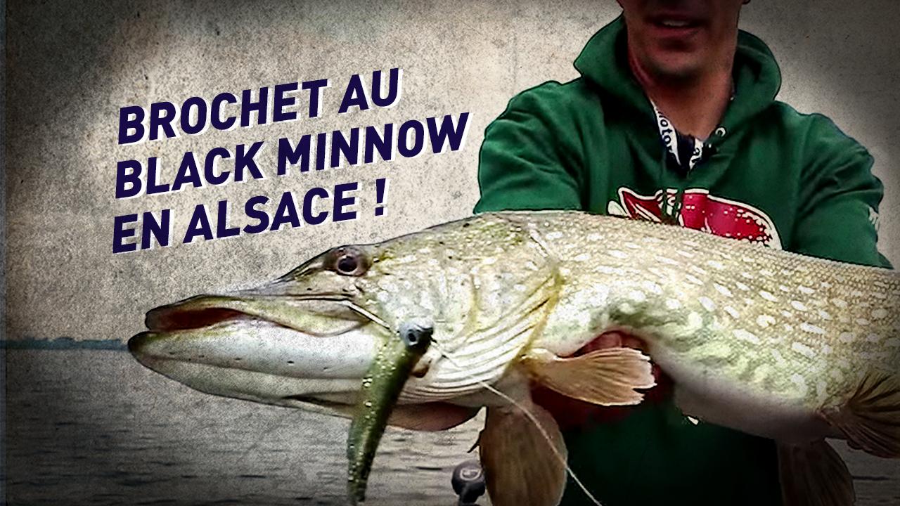 Philippe / Pêche du Brochet