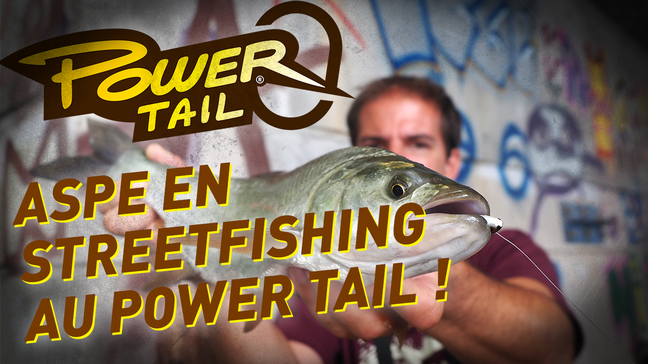 Aspe en streetfishing au Power Tail
