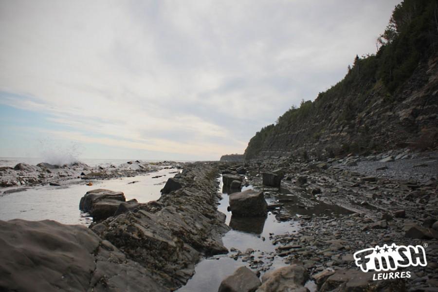 Fabien / recherche des bars rayés en Gaspésie