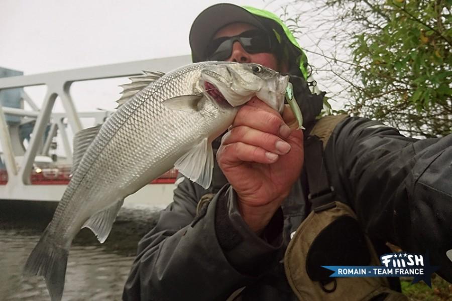 Romain / Street Fishing in the rain