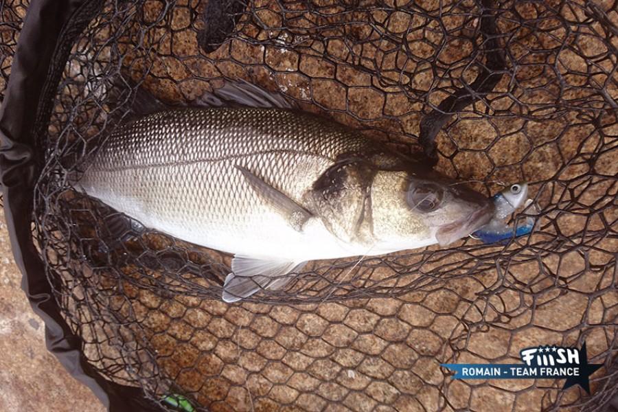 Romain / Le Havre Street Fishing