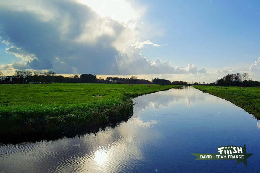 David / Brochets dans les polders