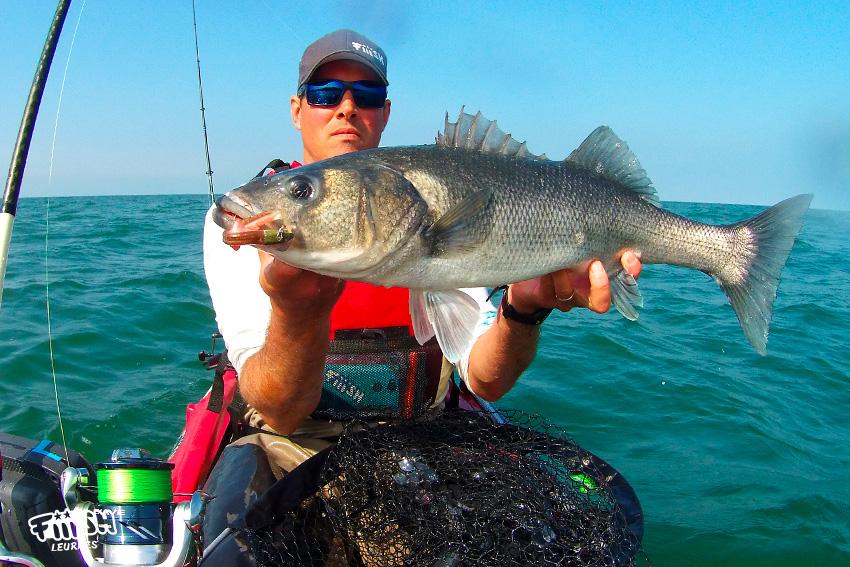 Romain / Pêche estivale, les clefs de la réussite