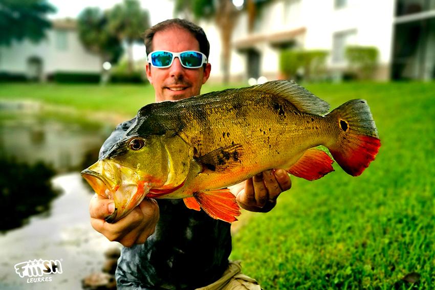 Phil' / Floride & Fiiish