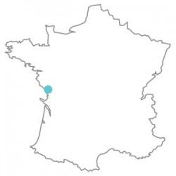 fiiish-alex_martin-map