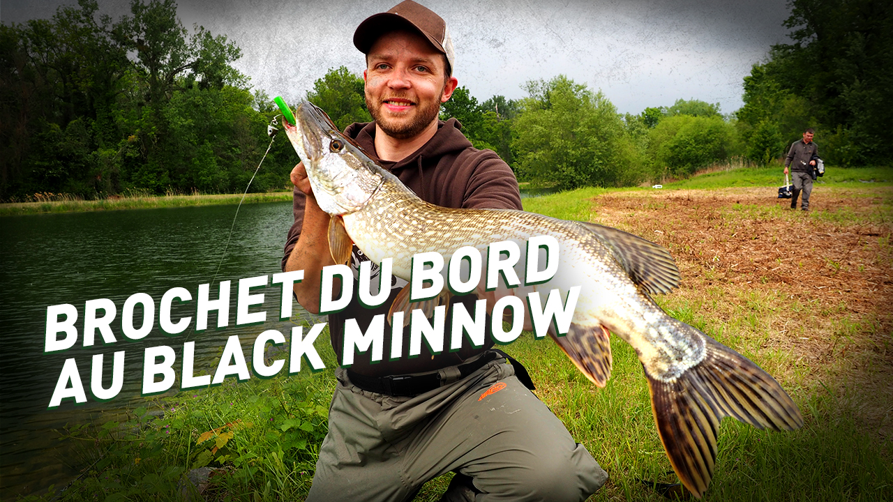 fiiish – Pêche du Brochet du bord au Black Minnow en Alsace – Part 2