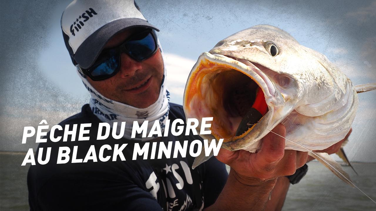 Pêche du maigre au Black Minnow