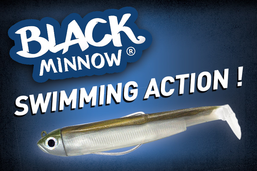 Nage du Black Minnow – Swimming Action