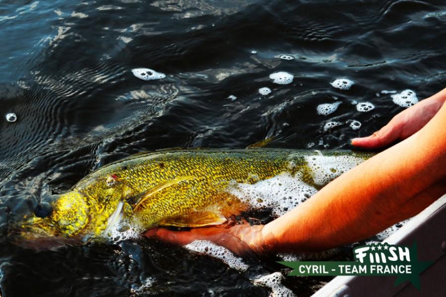 Cyril / Remise à l'eau !