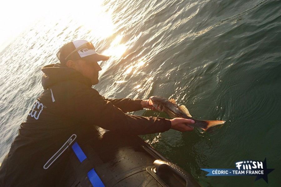 Romain / Préfishing concluant
