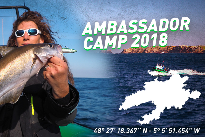 [VIDEO] Ambassador Camp 2018