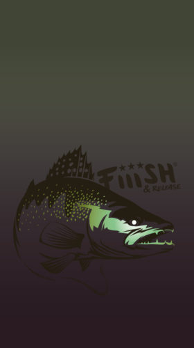 fiiish-wallpaper-zander